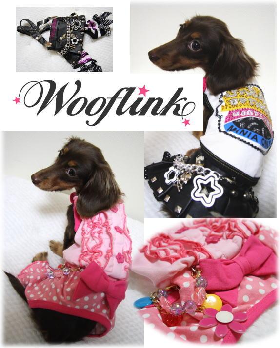 WoofLink!!来京!!!!!_b0084929_20125624.jpg