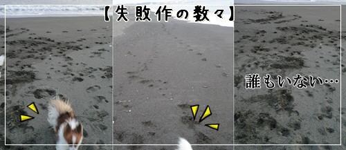 d0013149_953563.jpg