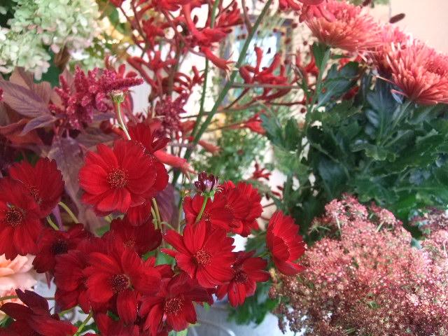 オークリーフ(ボルドー色の花)_f0049672_150820.jpg