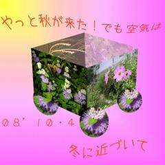 d0029826_1615380.jpg