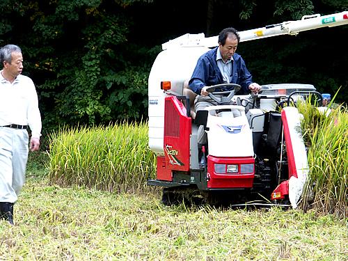 古代米の稲刈り_c0176838_1550183.jpg