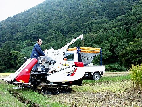 古代米の稲刈り_c0176838_15581847.jpg