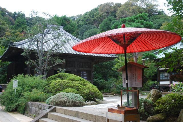 海蔵寺 鎌倉_e0029080_11561.jpg
