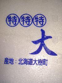 b0101991_1144657.jpg