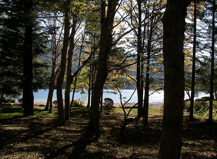 秋の丸沼 ープロローグー_c0095801_18514237.jpg