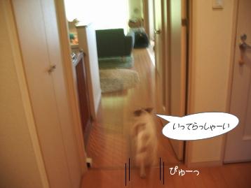c0030328_1442519.jpg
