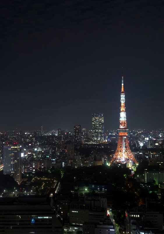 Night view of Hamamatsu-cho 1_f0018464_9182638.jpg
