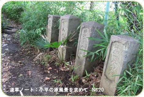f0137096_15275735.jpg