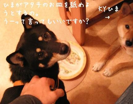 f0068501_23251716.jpg