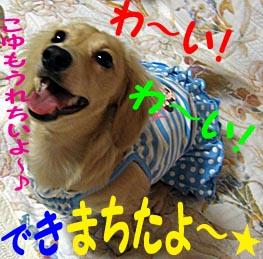 c0108112_1201486.jpg