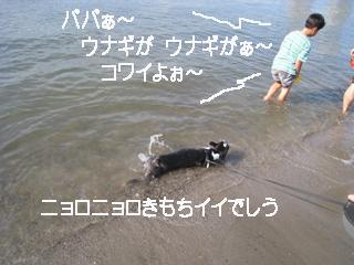 e0080117_0442479.jpg