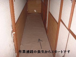 f0031037_20402544.jpg