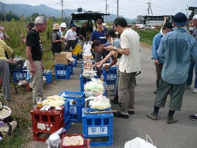 稲刈りに行ってきました。(茨城 木内酒造)_f0193752_245417.jpg