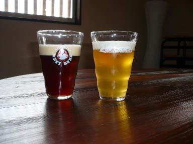 稲刈りに行ってきました。(茨城 木内酒造)_f0193752_249532.jpg