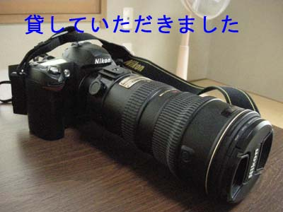 e0099853_1044238.jpg
