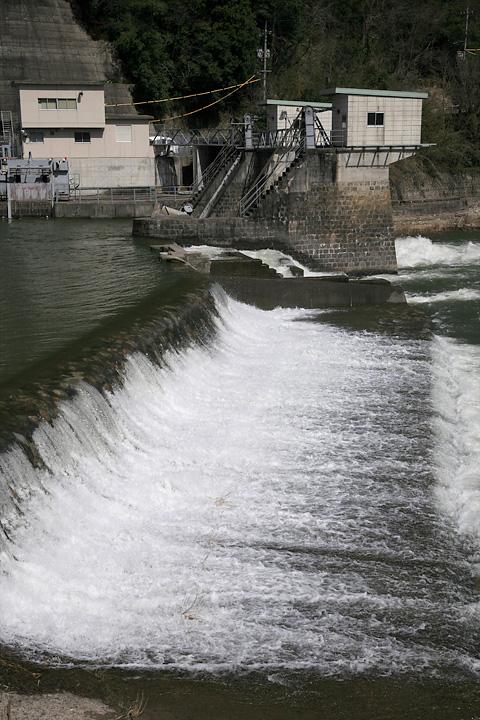 鳥取県 日野川にて_f0091955_23341654.jpg