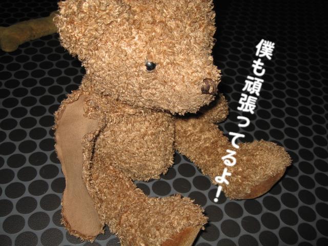 a0101958_1653732.jpg