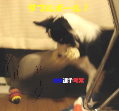 f0132070_0435170.jpg
