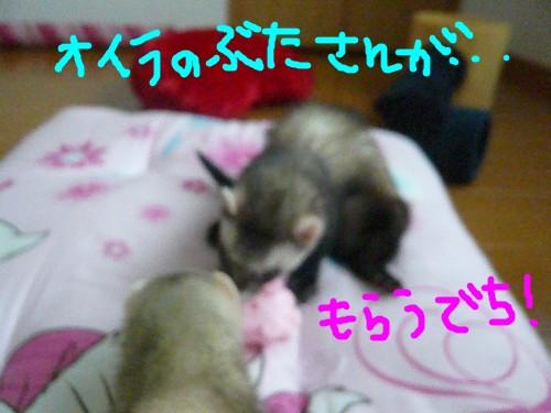c0165472_19042.jpg