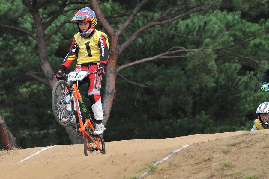 第55回全日本プロ選手権自転車競技大会BMX競技INひたち:全クラスの予選その2_b0065730_650496.jpg