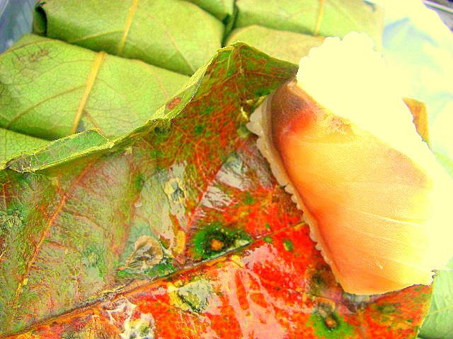 大好物の柿の葉寿し_f0053342_19384730.jpg