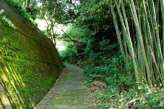熊野古道_b0093754_0134889.jpg