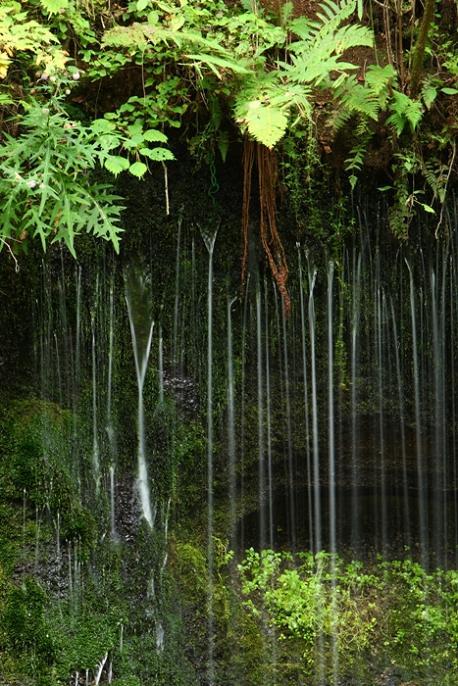 軽井沢への小旅行 <9> 白糸の滝 2008年9月28日_e0143883_17202477.jpg