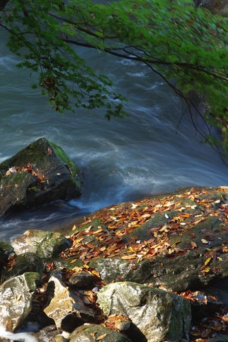 軽井沢への小旅行 <9> 白糸の滝 2008年9月28日_e0143883_2111441.jpg