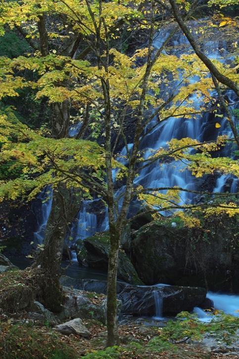 軽井沢への小旅行 <9> 白糸の滝 2008年9月28日_e0143883_21829100.jpg
