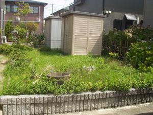 稲刈りが始まりました_b0058290_14171191.jpg