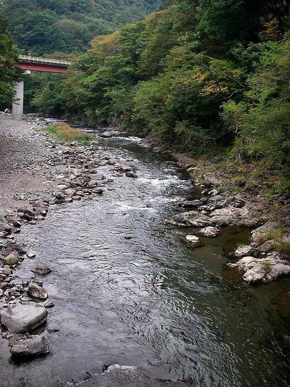 神流川オフ・シーズンニジマス釣り場_c0095801_17313863.jpg