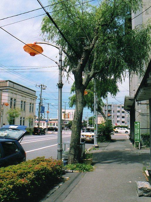 函館銀座通り・レトロ建築コレクション(その5、銀座の街灯)_f0142606_2351959.jpg
