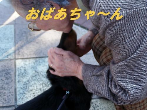 b0067012_718075.jpg