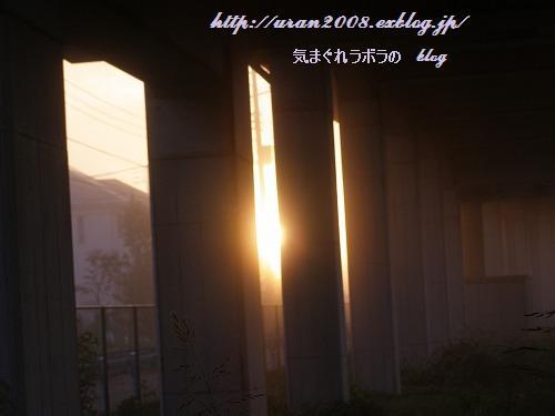 秋の朝_d0147812_21374864.jpg