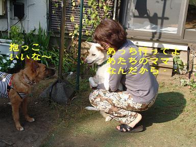 f0086814_2435133.jpg