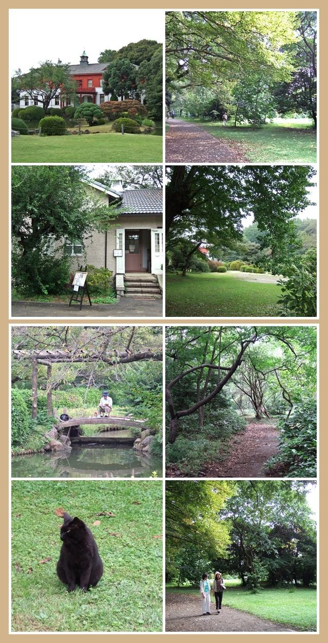 小石川植物園 2008年10月_f0012718_115344.jpg