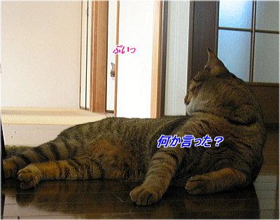 b0097848_13561034.jpg