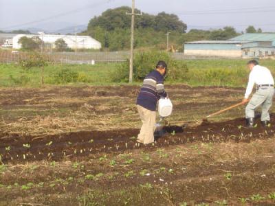 初秋のせせらぎ農場_e0007558_841989.jpg
