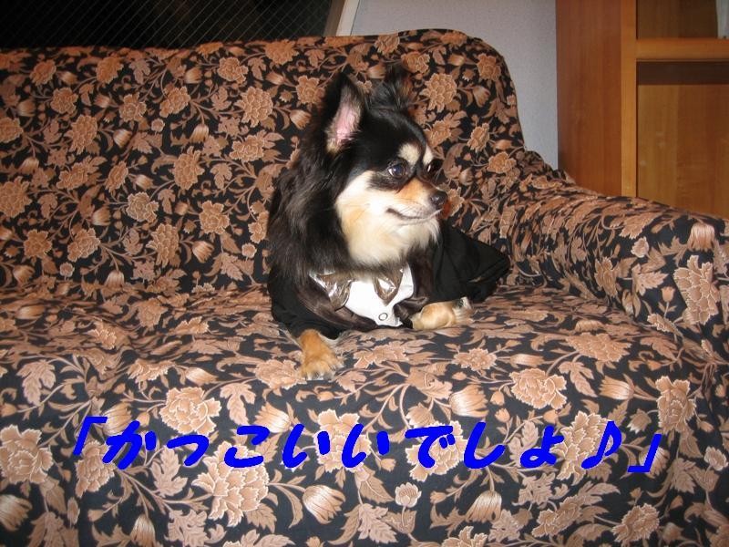 b0150088_22212010.jpg