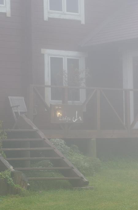 伊吹山を貸切 その2  霧の中で _d0145934_1532441.jpg
