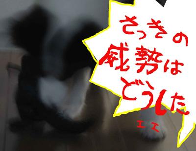 f0132070_21405144.jpg