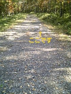 慣れなさい_f0148927_1894417.jpg
