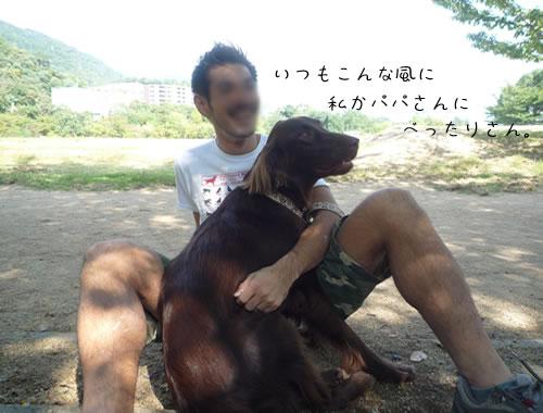 f0154163_957832.jpg
