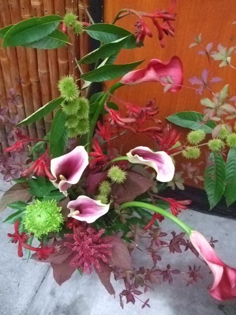 オークリーフ(開店の花)_f0049672_15224041.jpg