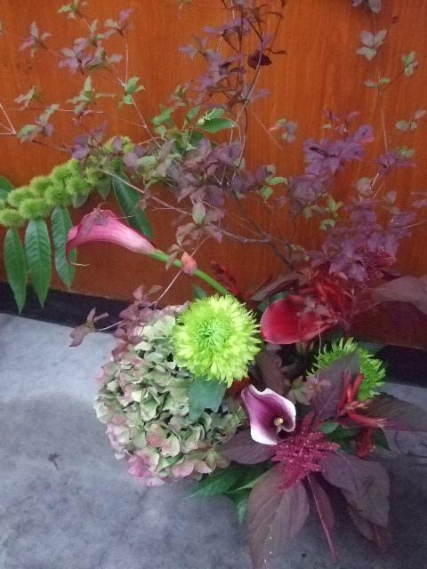 オークリーフ(開店の花)_f0049672_1523639.jpg