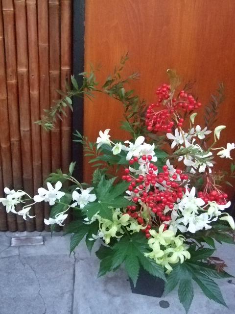 オークリーフ(開店の花)_f0049672_1537155.jpg
