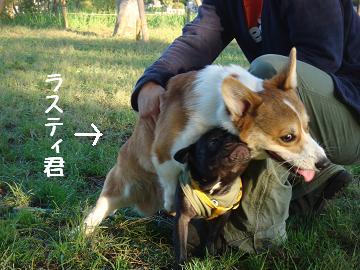 b0134197_0215930.jpg