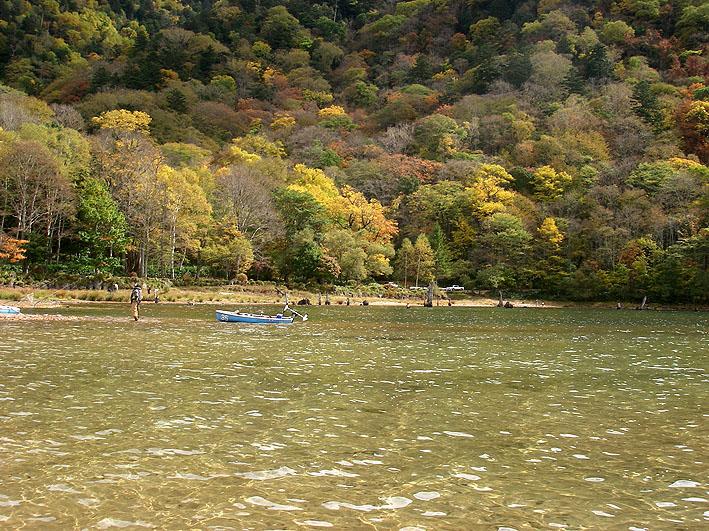 秋の丸沼 第二弾_c0095801_2015205.jpg