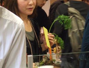 野菜ソムリエ_e0130607_144240.jpg