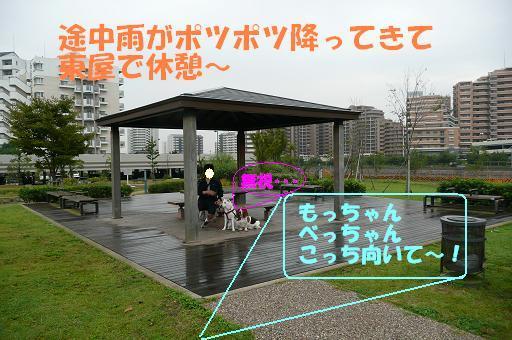 f0121712_1465475.jpg
